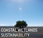 Coastal Wetland Sustainability
