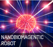 NanBioMagentic Robot 180 by 160