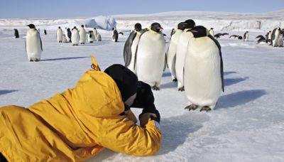Eco Antarctica_Learn more about the Researchers