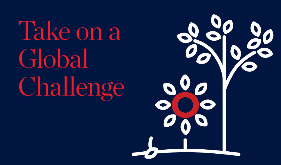 Global Challenges Funding Icon
