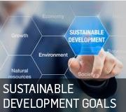 Sustainable Development Goals Icon