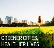 Greener Cities Healthier Lives Icon