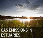 Gas emissions in estuaries icon