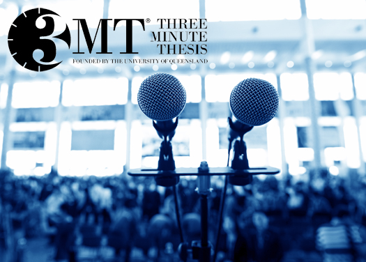 Three Minute Thesis 2014