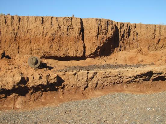 WIGL Palaeo desert pavement